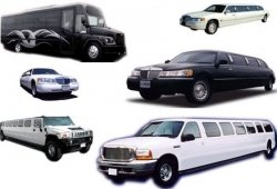 Which Type of Limo Best Suits You